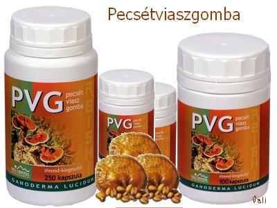 PVG-Pecsétviaszgomba kapszula 100 db